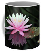 water lily 92 Sunny Pink Water Lily with Lily Pad Coffee Mug
