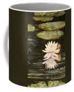 Water Lily And Pads Coffee Mug