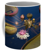 Water Lily And Platters Coffee Mug