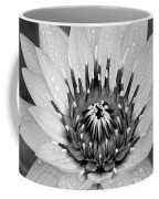 Water Lily B/w Coffee Mug