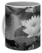 Water Lily - Burnin' Love 13 - Bw Coffee Mug