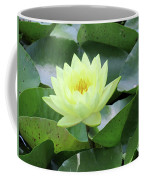 Water Lily - Burnin' Love 14 Coffee Mug