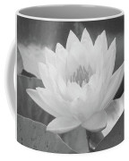 Water Lily - Burnin' Love 15 - Bw - Water Paper Coffee Mug