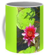 Water Lily In Pond Coffee Mug