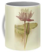 Water Lily  Nymphaea Zanzibarensis Coffee Mug