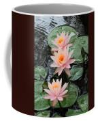 Water Lily Trio Coffee Mug