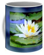 Water Lily With Blue Border - Digital Painting Coffee Mug