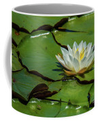 Water Lily With Friend Coffee Mug