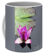 Water Lily With Rain Drops Coffee Mug