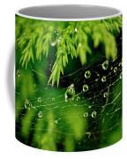 Water Orbs In Cobweb. Coffee Mug