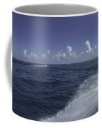 Water Play Coffee Mug