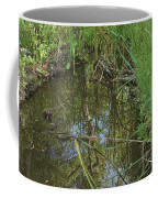 Water Pond Reflection In Peters Canyon Coffee Mug