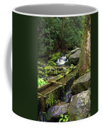 Water Sluice  Coffee Mug