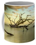 Water Spider Coffee Mug