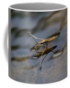 Water Strider Coffee Mug