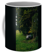 Water Tank In A Pasture Coffee Mug