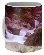 Water Winding Through Rocks Coffee Mug