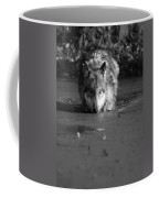 Water Wolf I Coffee Mug
