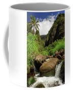Waterfall At The Iao Needle Coffee Mug