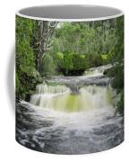 Waterfall In Cradle Mountain Coffee Mug