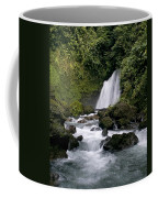 Waterfall In La Fortuna Coffee Mug