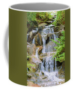 Waterfall In The Vandusen Botanical Garden 1 Coffee Mug