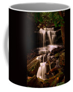Waterfall Mcconnells Mills State Park Coffee Mug