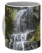 Waterfall On Mount Ranier Coffee Mug