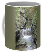 Waterfall Rocks Foliage Pond 2 9132017 Coffee Mug