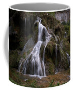 Waterfall Coffee Mug