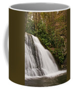 Waterfall04 Coffee Mug