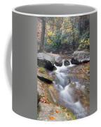 Waterfalls At Roaring River Stone Mountain Coffee Mug