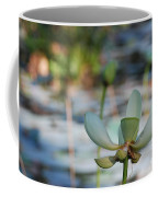 Waterlily Wash Horizontal Coffee Mug