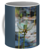 Waterlily Wash  Vertical Coffee Mug