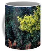 Wattyl - Wild Flower Of Australia Coffee Mug