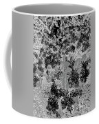 Waxleaf Privet Blooms On A Sunny Day In Black And White - Color Invert Coffee Mug