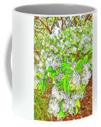 Waxleaf Privet Blooms On A Sunny Day Coffee Mug