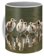 We Are Family - Seven Egytean Goslings In A Row Coffee Mug