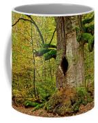 We Are Here Since 1000 Years 1 Coffee Mug
