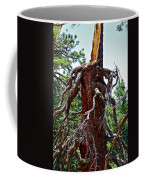 Weather Beaten Coffee Mug
