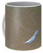 Weathered Feather  Coffee Mug