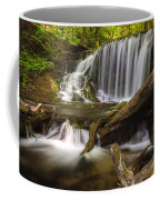 Weavers Creek Falls Coffee Mug