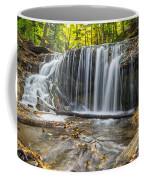 Weaver's Creek Falls Coffee Mug