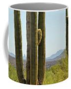 Weavers Needle Coffee Mug