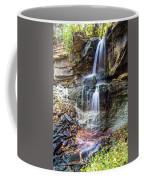 Webwood Falls Coffee Mug