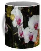 Wedding Orchids Coffee Mug