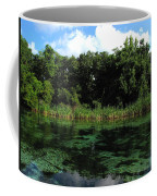 Weeki Wachee River Coffee Mug