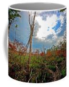 Weeks Bay Swamp Coffee Mug