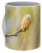 Weeping Willow Seed Coffee Mug