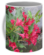 Weigela Florida Red Prince Coffee Mug